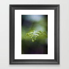 Raining Green Framed Art Print