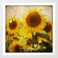 kansas Art Prints featuring Kansas by Chickadee