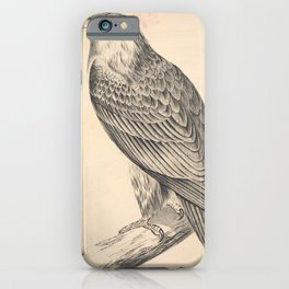 Vintage Print - Companion to Gould's Birds of Australia (1877) - Wedge-Tailed Eagle iPhone Case