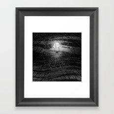 Spider Framed Art Print