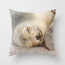 Sleeping sea lion on the beach Throw Pillow