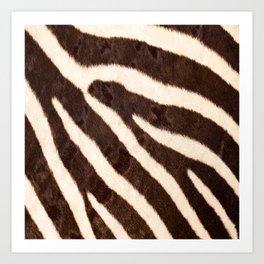Zebra #decor #society6 #buyart Art Print