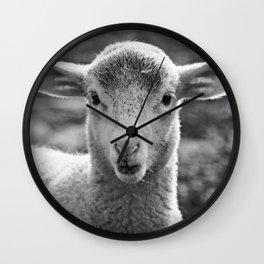 Portrait of a lamb Wall Clock