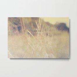 Hazy Days of Summer Metal Print