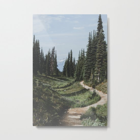 Mountain Trail Metal Print