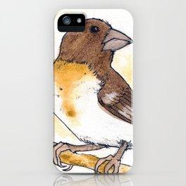 Yellow Rose-breasted Grosbeak iPhone Case