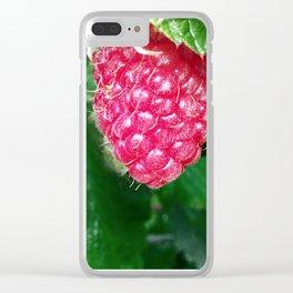 Plump Raspberry Shot Up Close Clear iPhone Case