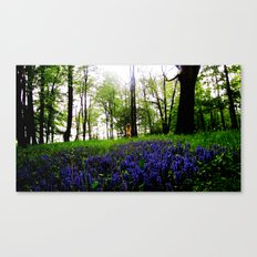Spring Meadow Canvas Print