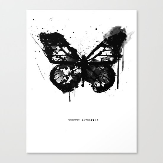 Black Monarch Canvas Print