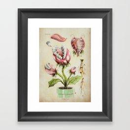 Piranha Plant Botanical Illustration Framed Art Print