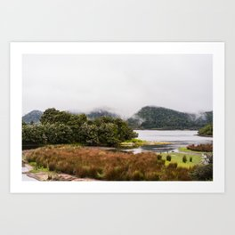 Forest Meets The Lake Art Print