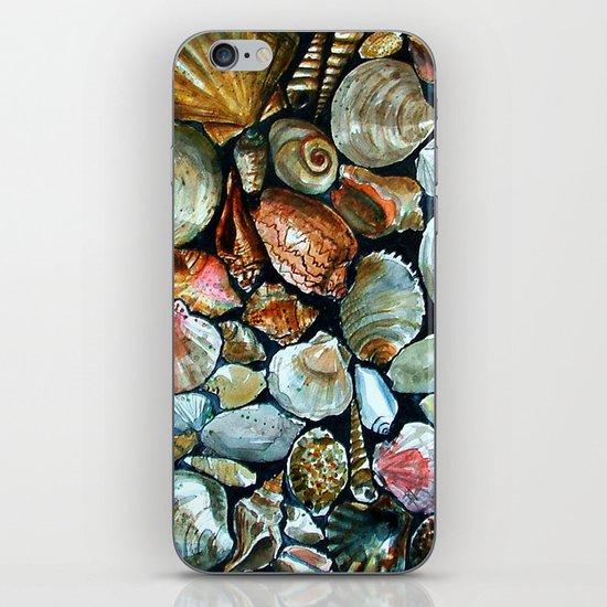 Sea shells  iPhone & iPod Skin