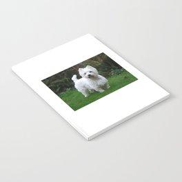 Westie in the garden Notebook