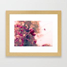 Berrys in the November rain Framed Art Print