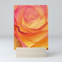 Colourful Rosie Mini Art Print