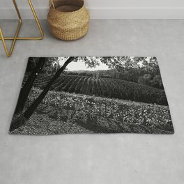 Vineyard in California Black & White Pencil Drawing Photo Rug