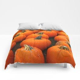 Plenty of Pumpkins! Comforters