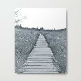 Into the Distance Metal Print