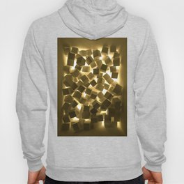 3D What Burns in Your Box? Hoody