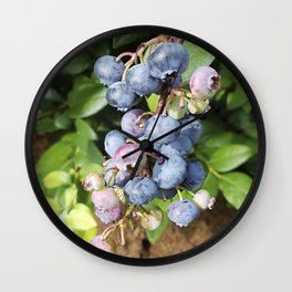 Ready to pick blueberries? Wall Clock