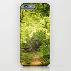 The Secret Path iPhone 6s Slim Case
