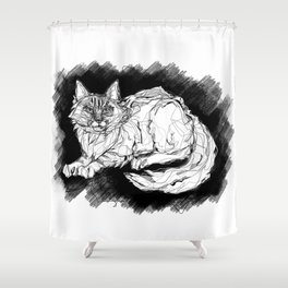 Dio the Maine Coon Shower Curtain
