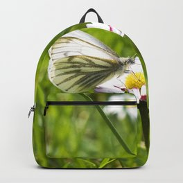 WHITE BUTTERFLY on COMMON DAISY Backpack