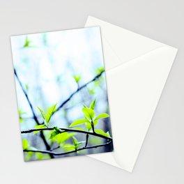 Spring pastel Stationery Cards