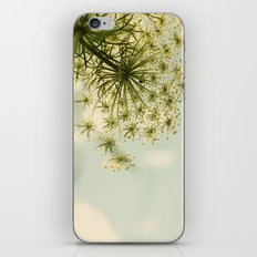 Botanical Queen Anne's Lace iPhone & iPod Skin