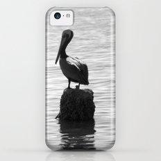 Standing alone iPhone 5c Slim Case