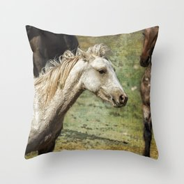Nimbus, No. 2 Throw Pillow