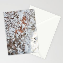 Bush in the Snow Stationery Cards