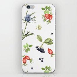 rosehip, chokeberries and teasel II iPhone Skin