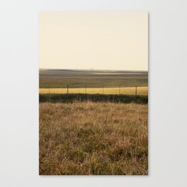 Varied Prairie Canvas Print