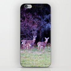 The Dear Deer Family iPhone & iPod Skin