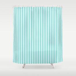 Classic Aqua Blue and White Mattress Ticking Stripes Shower Curtain