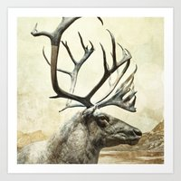 reindeer Art Prints featuring Reindeer by BlueMoonArt