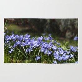 Blue Scilla Rug