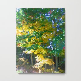 Autumn arrives Metal Print