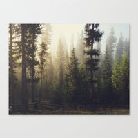 golden Canvas Prints featuring Sunrise Forest by Kevin Russ