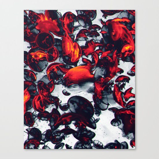 Jelly Canvas Print