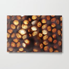 Nature's Stained Glass - Honeycomb Metal Print