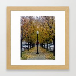 Lampost in the fall Framed Art Print