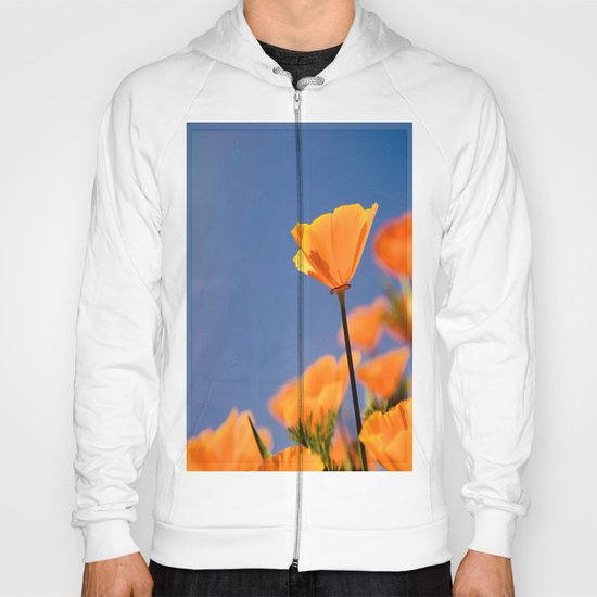 Poppies on Blue Hoody