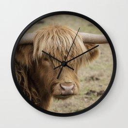 Scottish Highland cow Wall Clock