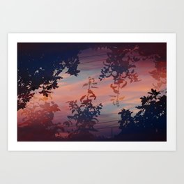 Flora at Dusk Art Print