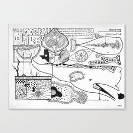 Whale Anatomy  Canvas Print