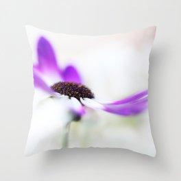 Asteracea Senecio c.Senetti, Senecio vulgaris, Throw Pillow