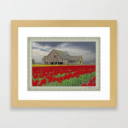 RED TULIPS AND BARN SKAGIT FLATS Framed Art Print