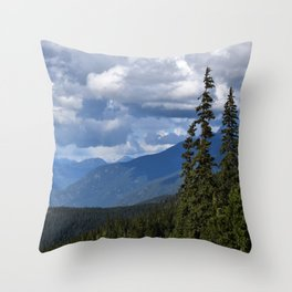 Muted Echo Throw Pillow